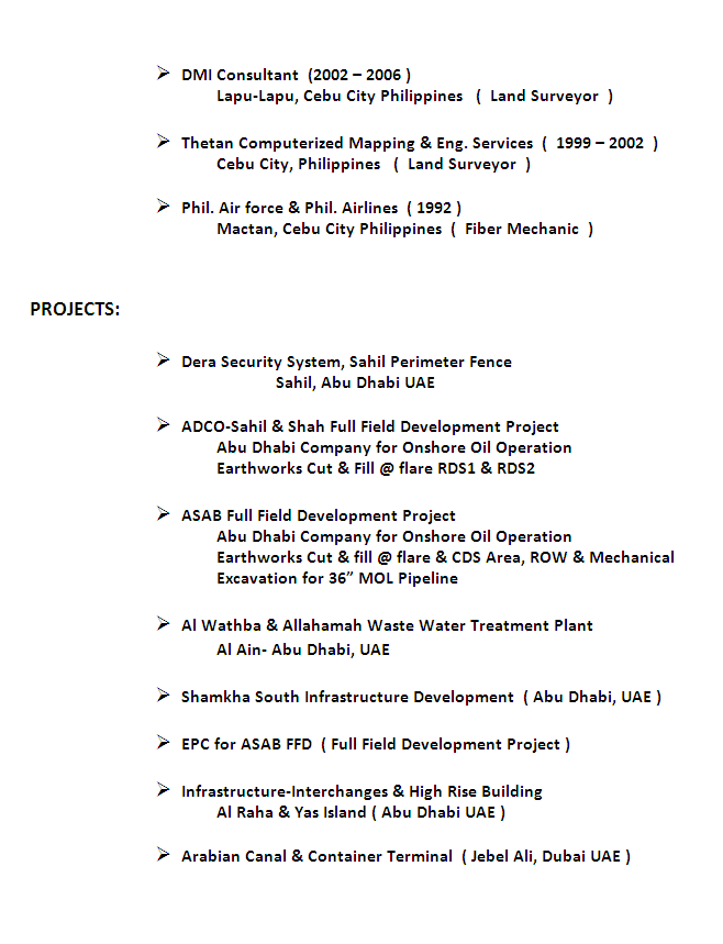 Land Surveyor Resume Sample 02
