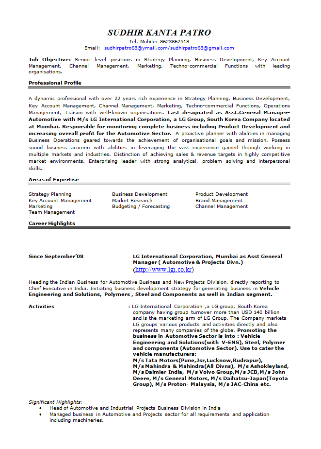 Marketing Manager Resume 01