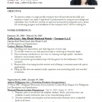Accountant Cv Example 01